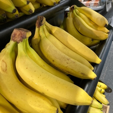 In refrigerated ships, bananas once shaped Central American regimes